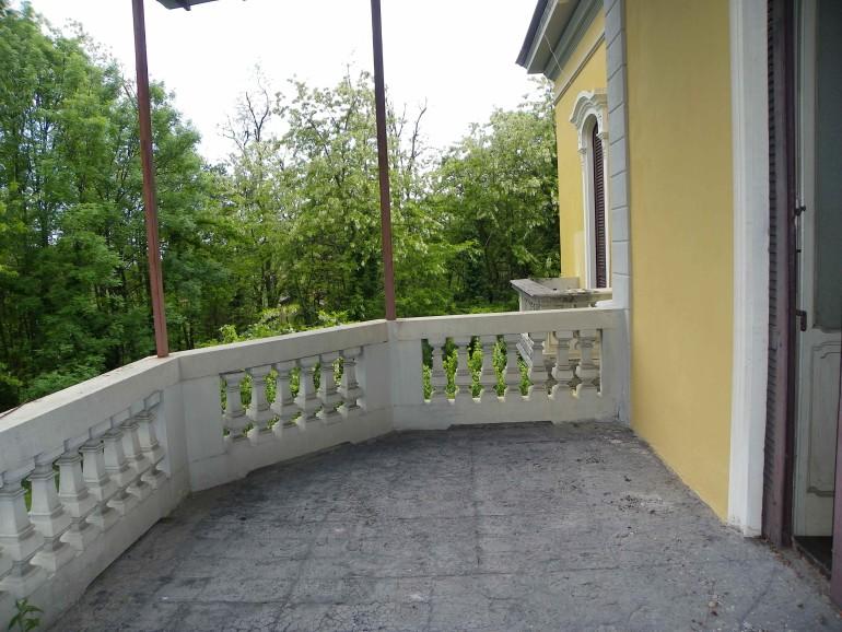 IMGP0599